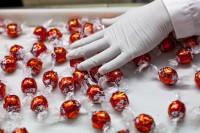 Oferty pracy w Holandii na produkcji pakowanie słodyczy bez języka Oss