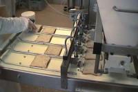 Holandia praca na linii produkcyjnej przy pakowaniu bez języka Tilburg