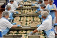 Praca Holandia przy taśmie na produkcji dań mrożonych od zaraz Emmeloord