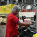 produkcja-slodyczy6-pakowanie