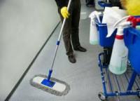 Praca w Holandii przy sprzątaniu hali produkcyjnej Helmond bez języka