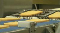 Od zaraz praca Holandia na produkcji sera bez znajomości języka Weert