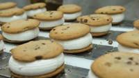 Praca Holandia bez znajomości języka przy pakowaniu ciastek Ochten