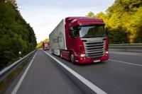 Kierowcy kat. C+E (również z ADR) praca Holandia