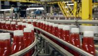 Praca Holandia przy pakowaniu ketchupów bez znajomości języka Wijchen