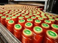 Holandia praca w Wijchen przy pakowaniu keczupów bez znajomości języka