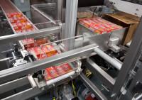 Dronten, Holandia praca w produkcji jako pracownik zakładu przetwórstwa spożywczego
