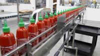 Bez języka praca w Holandii od zaraz na produkcji sosów Nieuw Vennep