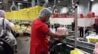 Veghel praca w Holandii od zaraz bez języka przy pakowaniu słodyczy
