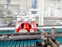 Praca Holandia bez języka od zaraz przy pakowaniu ketchupu w Wijchen