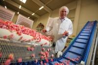 Praca w Holandii na produkcji słodyczy przy sortowaniu od zaraz Roosendaal
