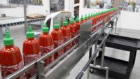 Od zaraz praca w Holandii na produkcji sosów bez znajomości języka Udenhout