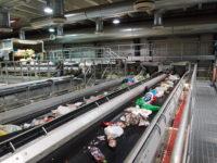 Fizyczna praca Holandia od zaraz bez języka sortowanie odpadów Eindhoven