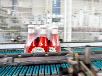 Od zaraz oferta pracy w Holandii pakowanie ketchupów bez języka Wijchen