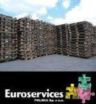 Oferta fizycznej pracy w Holandii przy regeneracji i produkcji palet, Klundert