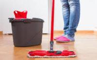 Bez języka ogłoszenie pracy w Holandii od zaraz Otterlo przy sprzątaniu domków letniskowych