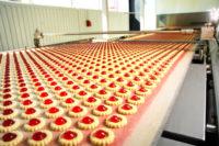 Od zaraz dam pracę w Holandii na produkcji ciastek bez języka 2017 Nieuwkuijk