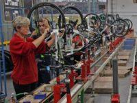 Od zaraz praca w Holandii przy produkcji rowerów w fabryce z Wassenaar