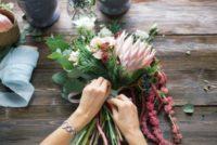 Ogrodnictwo oferta pracy w Holandii przy kwiatach bez znajomości języka, Sliedrecht