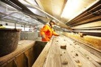 Houten od zaraz dam pracę w Holandii przy sortowaniu odpadów budowlanych