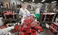Pracownik produkcji przekąsek dam pracę w Holandii, fabryka z Hardewijk