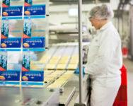 Od zaraz ogłoszenie pracy w Holandii bez języka przy pakowaniu sera Venlo