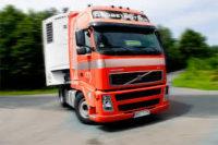 Praca w Holandii jako kierowca kat. C+E przewóz żywności, Zeeland