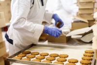 Praca w Holandii bez znajomości języka od zaraz pakowanie ciastek Panningen