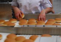 Holandia praca od zaraz pakowanie bułek w piekarni z językiem angielskim, Breukelen
