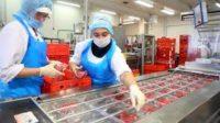 Pakowacz Holandia praca od zaraz na produkcji wędlin w Wijchen