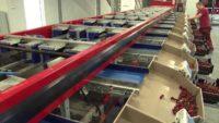 SKOCZEK – praca w Holandii na produkcji dla kobiet, Sliedrecht