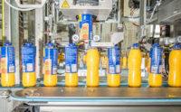 Holandia praca od zaraz na produkcji soków bez znajomości języka Dronten