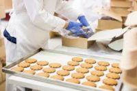 Dam pracę w Holandii bez języka przy pakowaniu ciastek od zaraz Bunschoten