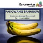 Pakowanie bananów oferta pracy w Holandii bez języka od zaraz 2019, IJsselmuiden