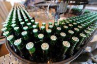 Pakowanie piwa od zaraz dam pracę w Holandii bez znajomości języka, Eersel