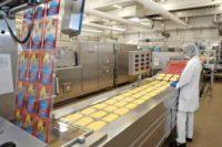 Praca w Holandii przy produkcji sera od zaraz w fabryce z Reeuwijk