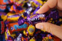 Praca Holandia bez języka przy pakowaniu słodyczy od zaraz Veghel 2019