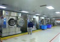 Oferta fizycznej pracy w Holandii w pralni przemysłowej od zaraz bez języka Eindhoven 2019