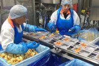 Praca Holandia na produkcji spożywczej od zaraz w Helmond, Best lub Deurne