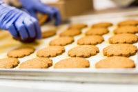 Holandia praca od zaraz przy pakowaniu ciastek z językiem angielskim, Harderwijk