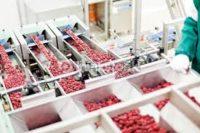 Operator na produkcji musu owocowego oferta pracy w Holandii od zaraz, Geldermalsen