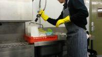 Praca w Holandii na zmywaku jako pomoc kuchenna od zaraz bez języka Bergen op Zoom