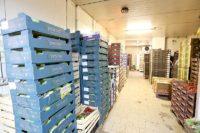 Praca Holandia od zaraz jako orderpicker w magazynie z warzywami i owocami