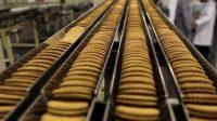 Praca w Holandii na produkcji operator maszyn pakujących od zaraz, Zoutkamp