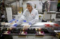 Dam pracę w Holandii na produkcji spożywczej od zaraz bez języka i stawki wiekowej, Haga