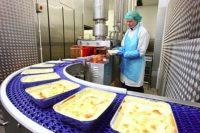 Oferta pracy w Holandii bez języka na produkcji spożywczej od zaraz Haga 2020