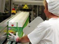 Oferta pracy w Holandii na produkcji pakowanie przekąsek mrożonych od zaraz, Waalwijk