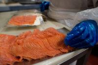 Oferta pracy w Holandii przy pakowaniu ryb wędzonych bez znajomości języka w Bunschoten