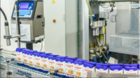 Holandia praca dla par z językiem angielskim na produkcji w fabryce cukru z Lelystad