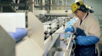 Pakowanie kurczaków oferta pracy w Holandii od zaraz i bez znajomości języka, Nijkerk 2020